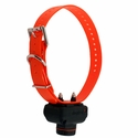 buy discount  Dogtra 2500 T&B Collar
