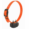 buy discount  Micro-iDT PLUS Collar Detail
