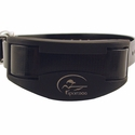 buy discount  SportDOG SD-2525 Collar Detail
