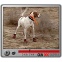 buy discount  Bark'n Boots Grip Trex Video