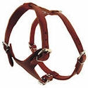 buy discount  OmniPet Leather 2-ply Latigo Adjustable Harness