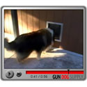 buy discount  Plexidor Dog Doors Testimonials Video