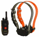 Dogtra SureStim H Plus Remote Training Collar 2-Dog