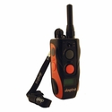 buy discount  Dogtra Surestim M Plus Transmitter with Lanyard Attached