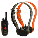 buy Dogtra SureStim H Plus Remote Training Collar 2-Dog shock collars