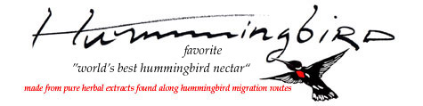 Hummingbird Favorite
