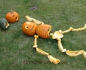 An Easier Pumpkin Skeleton