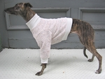 Whippet Nantucket Fleeced Sweaters