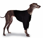 Greyhound Black Sweatshirt