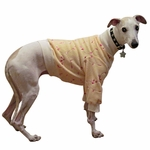 Whippet Embroidered Yellow Fleece Sweater