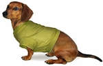Dachshund Light Shirts/ Tees