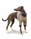 Italian Greyhound Camel Fleece Sweater
