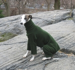Whippet Forest Fleece Bodysuit