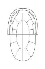 Concorde Sectional Configuration 5