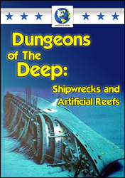 Dungeons Of The Deep: Shipwrecks & Artificial Reefs DVD - www.ihfhilm.com