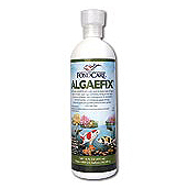 AlgaeFix 64 oz.
