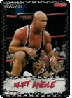 Total Nonstop Action Wrestling Trading Cards