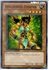 Yugioh: Amazoness Fighter (C) GLD3-EN005 (Limited Edition)