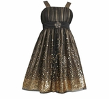 Bonnie Jean Collection: Special Occasion Sequin Mesh Emma Dress