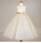 Beautiful Yellow Tulle Dress with Gold