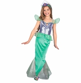 Ariel Costume - Little Mermaid Costume sold out