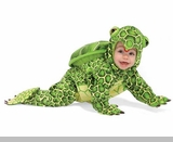 Green Turtle Costume