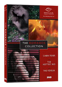 The Romance Collection - 3 DVD Set