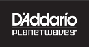 D'Addario/Planet Waves End Pins