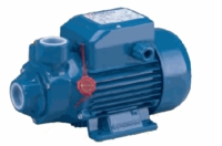 Pedrollo Peripheral Turbine Pump 1/3 HP 115 V  1 Phase  8 GPM # PK03-A16S (C)