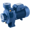 Pedrollo Pumps HF Series Centrifugal Pumps