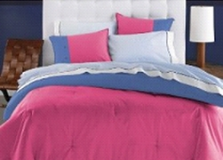 Dorm Room In A Box for XL Twin College Beds (10 PC Set) Rose/Blue  for Girls