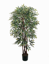 Potted Similax Silk Tree 4 ft
