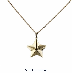 Shaped Star 14kt Gold Cremation Jewelry Necklace