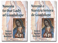 Novena Prayer to Our Lady of Guadalupe in English