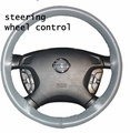 Steering Wheel Radio Controls