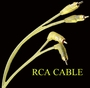 RCA 20 ft Stereo Cable<br>Lighting Audio