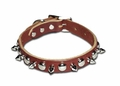 "Spiked And Stud Leather Dog Collars 3/4'"" Wide"