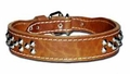 Tapered Leather Dog Collar With Studs 1.5  inch Wide
