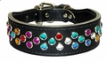 Leather Collar with Jewels