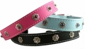 Leather & Crystals Dog Collars  3/4 inch wide