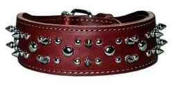 2 inch wide Leather Dog Collar with Spikes and Studs