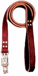 Heavy Duty 1 Inch x 72 Inch Dog Lead