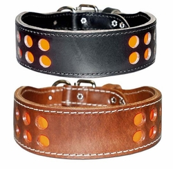 2 Row Inlaid Reflecto Collar