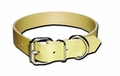 Perma Regular Dog Collar 1 Inch Wide