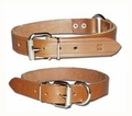 Leather Hunting Collars