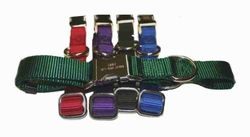 Engraved Metal Buckle Nylon Collars 3/4 Inch wide