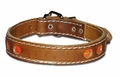 Reflective Leather Dog Collar