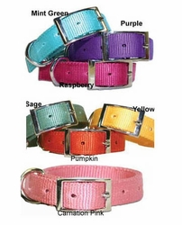Vineyard Harvest Dog Collars 3/4 Inch wide