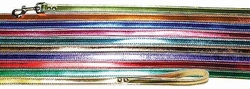1/2 inch wide x 4 Ft Metallic Leather Leash