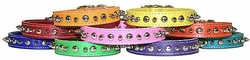 Leather Spike and Stud Collars  For Small Dogs
